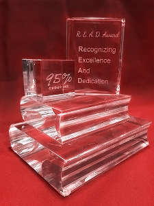 Recognizing Excellence and Dedication Award